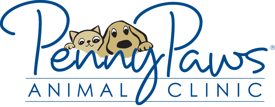 Low Cost Pet Vaccinations & Vaccines Dallas-Ft  Worth, TX